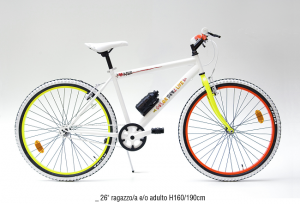 bici-sanmichele